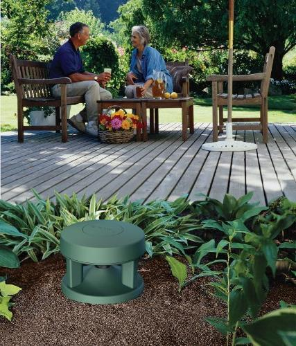 Bose Space Outdoor In-Ground Speakers